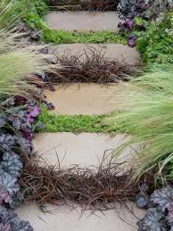 how to landscape with groundcover diy backyard ground cover ideas