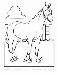 Small Picture Groomed Horse Coloring Page Worksheets Horse and Horse camp
