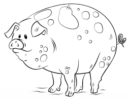 Small Picture Cartoon Pig coloring page Free Printable Coloring Pages