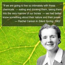 silent spring rdquo rachel carson it is what it is there s and exhibition which presents the global reception and impact of rachel carson s silent spring on one side are the attacks that began even before a