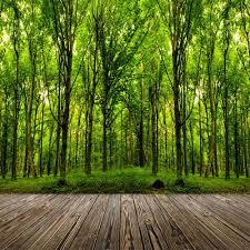 outdoor woods backgrounds. 8x12FT Outdoor Green Trees Forest Woods Dark Wooden Plank Floor Custom Photography Backdrops Studio Backgrounds Vinyl O