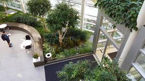 greenery office interiors. Office Atrium Greenery Interiors