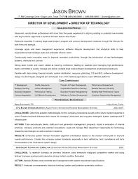 Information Technology Director Resume Resume For Study
