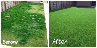 fake grass. Calista Fake Grass