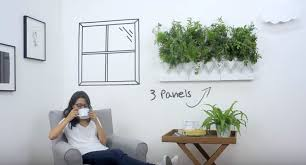 now you can grow a vertical garden on your wall power of humans