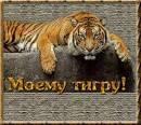 Открытка моему тигру