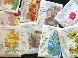 Small Picture Spring Gardening