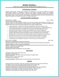 Assistant Probation Officer Sample Resume Magnificent Probation Officer Resume Megakravmaga