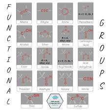For Each Of The Functional Groups Complete The Chart
