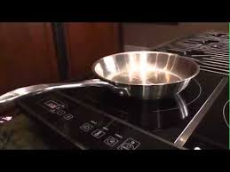 powerfull 18oo watt double induction cooktop with powershare berghoff 2204221 90
