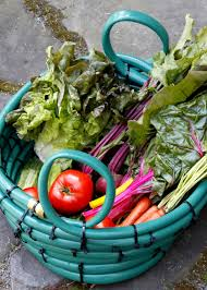 Diy Garden How To Make A Kid Friendly Garden Diy Network Blog Made