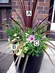 Love The Palm Large Container Garden  Container Gardens Container Garden Ideas Photos