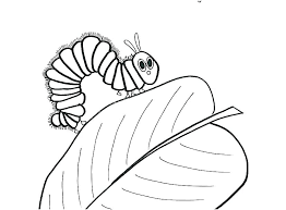 Coloring Pages Of Butterflies And Caterpillars Nlchamberinfo