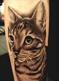 Tetování Kočka Fotogalerie Motivy Tetování