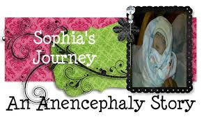 March Of Dimes Birth Plan Sophias Journey Our Birth Plan