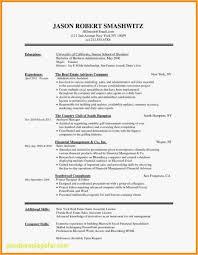 Bartender Resume Example Resume For Bartender Paragraphrewriter