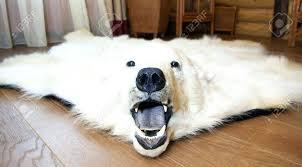 faux bear skin rug polar image bearskin fur with head