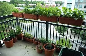 apartment herb garden balcony. Interesting Apartment Apartment Patio Garden Gardening Balcony  Herb Ideas  Throughout Apartment Herb Garden Balcony A
