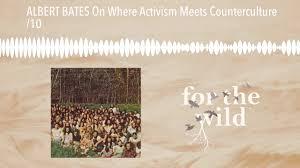 ALBERT BATES On Where Activism Meets Counterculture /10 - YouTube