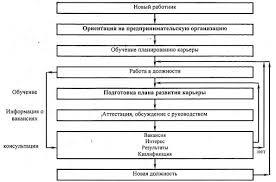 Курсовая работа Управление и планирование трудовой карьерой  Система планирования трудовой карьеры работника курсовая работа