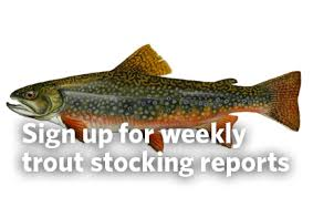 <b>Trout</b> Fishing | Department Of Natural Resources Division