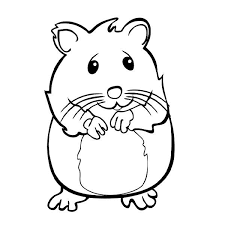 Small Picture Hamster Coloring Pages FAGI VISUALDNSNET Coloring Home