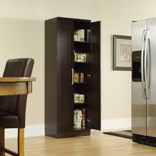 Endearing Sauder Homeplus Storage Cabinet Wood Cabinets With Doors