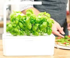 herb garden starter kit outdoor indoor smart fresh and grow