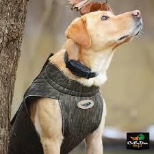 Neoprene Dog Vest Size Chart Tanglefree Neoprene Dog Vest Max 5 Camo