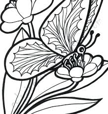 Butterfly And Flower Coloring Pages Adults For Boys Free Printable