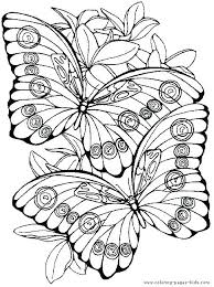 flower and butterfly coloring pages. Exellent And Flowers Butterflies Coloring Pages Cartoon  Fantasy Flower Butterfly  Intended Flower And Butterfly Coloring Pages P
