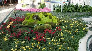 botanical garden las vegas