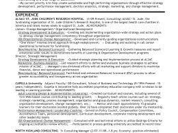 Leadership Resume Resume Leadership Skills 9 It Director Sample