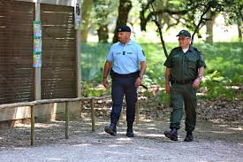 Resultado de imagem para GNR / Aveiro – Defesa da floresta contra incêndios