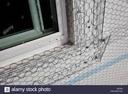 Haus Gebäude Industrie Haus Fenster Fensterbank Stuck Netz