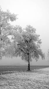 snow wallpaper iphone. Wonderful Snow Winter IPhone Wallpaper 8 In Snow Iphone A