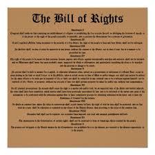 super essay on bill of rights  shape interpreting the bill of        craftsmanship essay on bill of rights