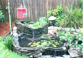pond decorations pond decorations idea new design coy ideas galls with 3 inside remodel 2