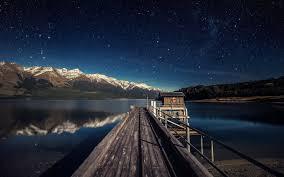 1440x2560 1440x2560 wallpaper starry sky tree night