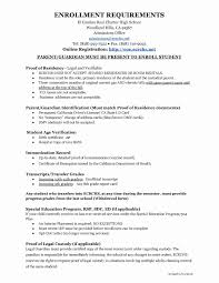Examples Of Executive Resumes Copy Certificate Of Guardianship