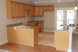 Light Brown Kitchen Cabinets Home Design Ideas