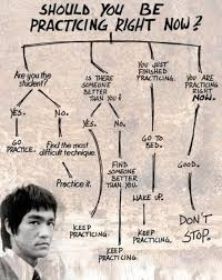 Bruce Lee Practice Chart Should You Be Practicing Right Now Flow Chart Infographic
