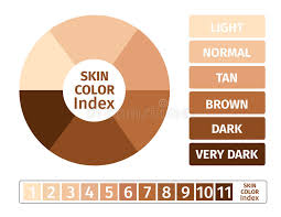 Skin Color Index Infographic 3 Chart Of Skin Stock