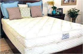 twin mattress covers ignatianqorg