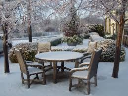 ornament in the winter landscape