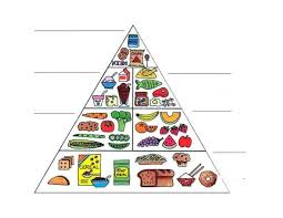 food pyramid form