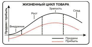 Реферат жизненный цикл товаров маркетинг всё для учёбы Реферат жизненный цикл товаров маркетинг