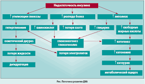 Кетоацидотическая кома этиология клиника диагностика и лечение  Патогенез ДКА