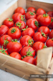 tomatoes in wooden crate stock photos