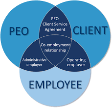 what is a peo what is a professional employer organization peo what is a peo